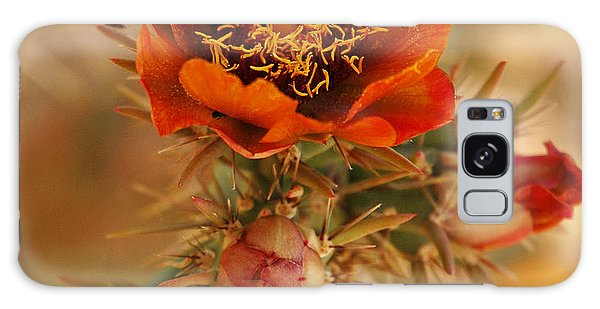 Buckhorn Cholla 2 Galaxy Case by Vivian Christopher