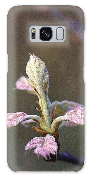 Budding Oak Leaves Galaxy Case