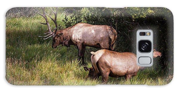 Bull Elk 7x7 Galaxy Case