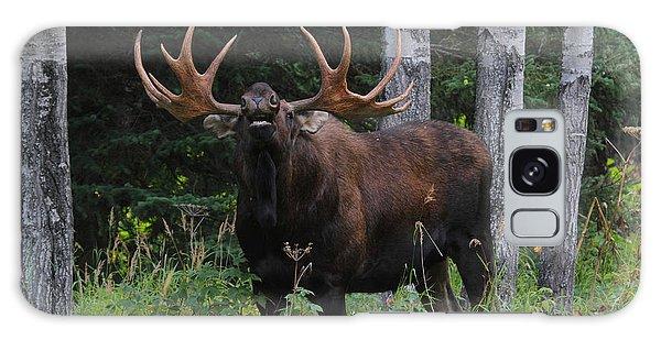 Bull Moose Flehmen Galaxy Case