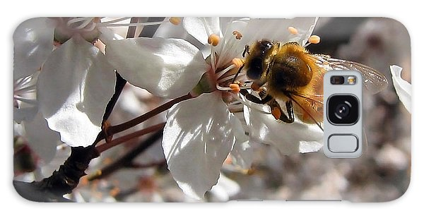 Bumble Bee On A Cherry Blossom Galaxy Case