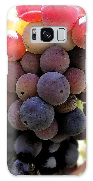 Bunch Of Ripening Grapes Galaxy Case by Anne Mott