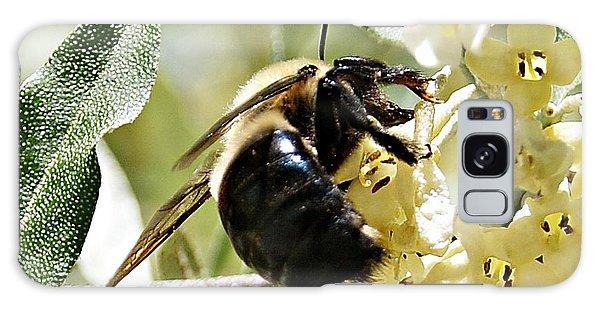 Busy As A Bee Galaxy Case