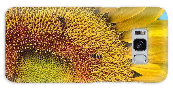 Busy Sunflower Galaxy Case
