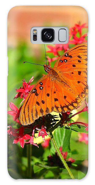 Butterfly On Pentas Galaxy Case by Carla Parris