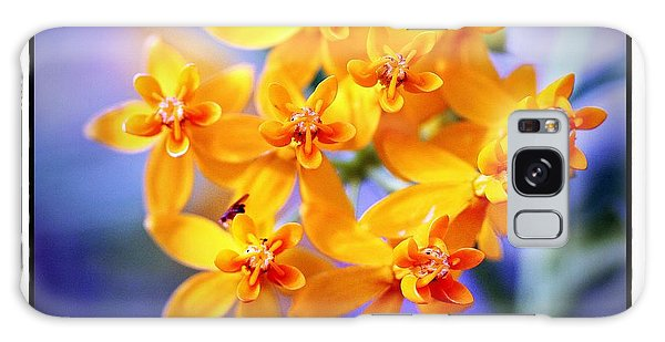 Butterfly Weed Galaxy Case by Judi Bagwell