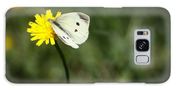 Cabbage Butterfly Galaxy Case