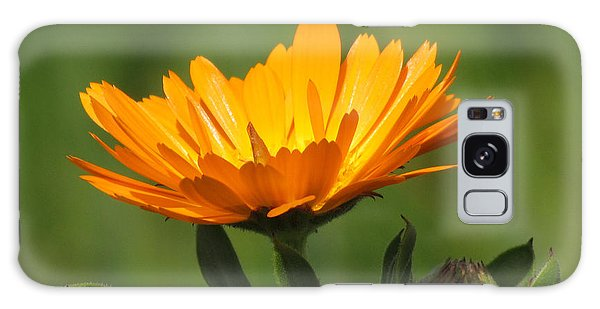 Calendula Bloom Galaxy Case