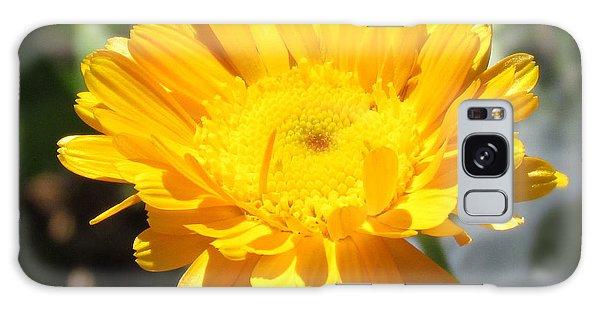 Calendula Blossom Galaxy Case