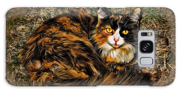 Calico Cat Galaxy Case