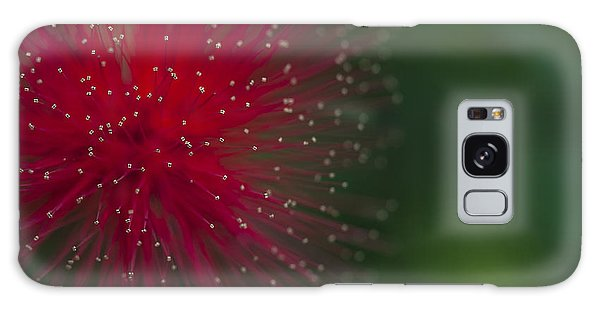 Calliandra Galaxy Case