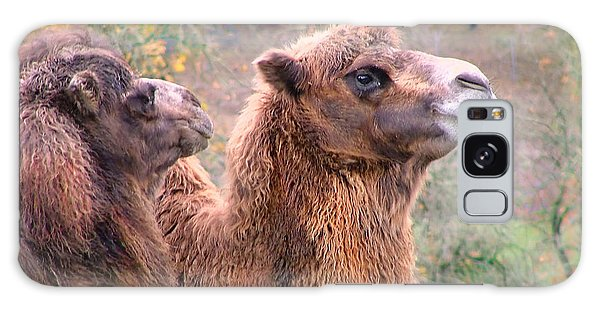 Calm Camels Galaxy Case by Wendy McKennon