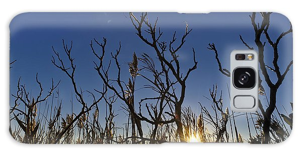 Cape Cod Marsh At Sunset Galaxy Case by Marianne Campolongo