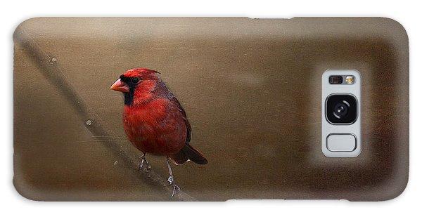 Cardinal Old Master - Artist Cris Hayes Galaxy Case