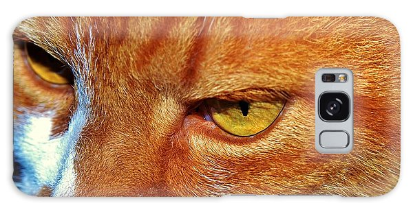 Cat Eyes Galaxy Case by Werner Lehmann