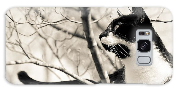 Cat In A Tree In Black And White Galaxy Case