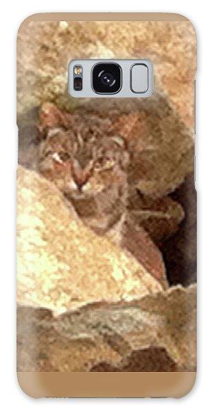 Cat On The Rocks Galaxy Case