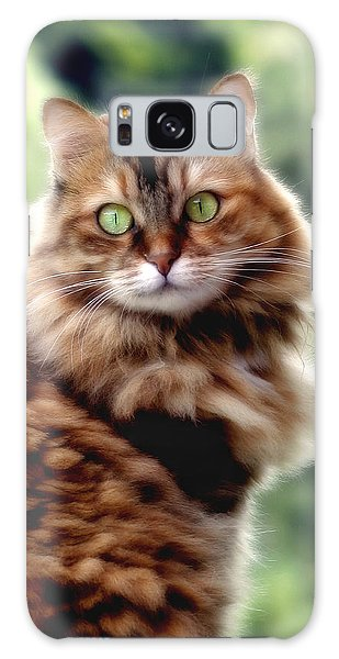 Cat Portrait Galaxy Case by Raffaella Lunelli