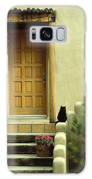 Cat Post Galaxy Case