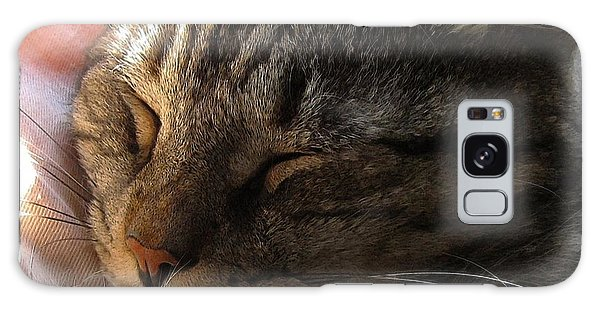 Catnap Galaxy Case by Dale   Ford