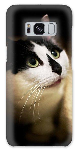 Catsablanca Galaxy Case by JM Photography