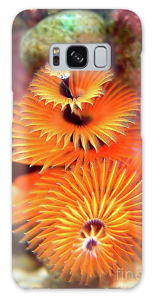 Christmas Tree Worm Galaxy Case by Joerg Lingnau