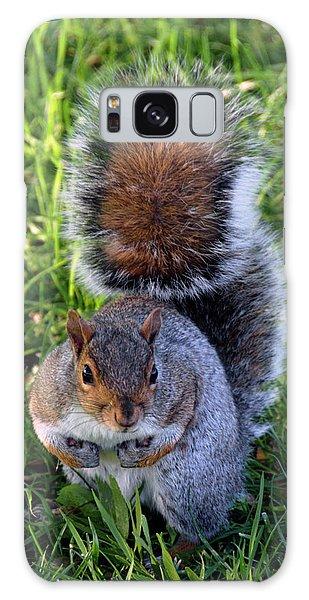 City Squirrel Galaxy Case