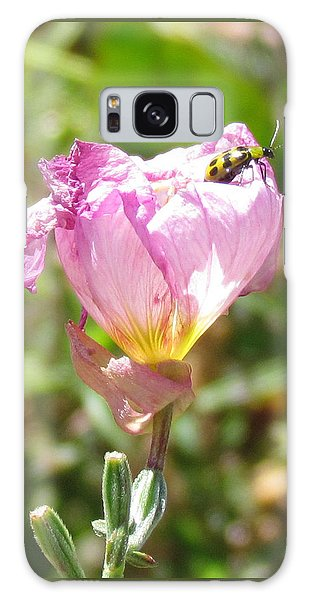 Climbing The Mexican Evening Primrose Galaxy Case