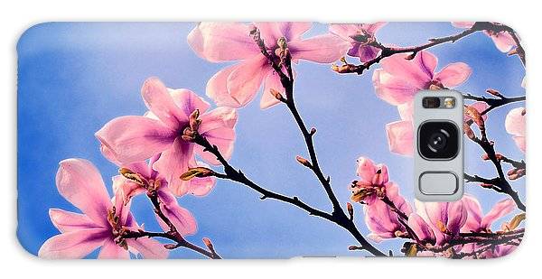 Cherry Blossums Galaxy Case