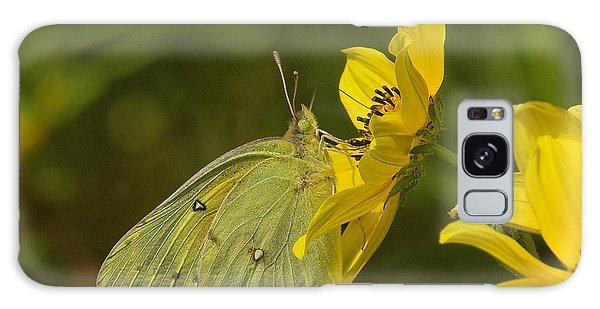 Clouded Sulphur Butterfly Din099 Galaxy Case by Gerry Gantt