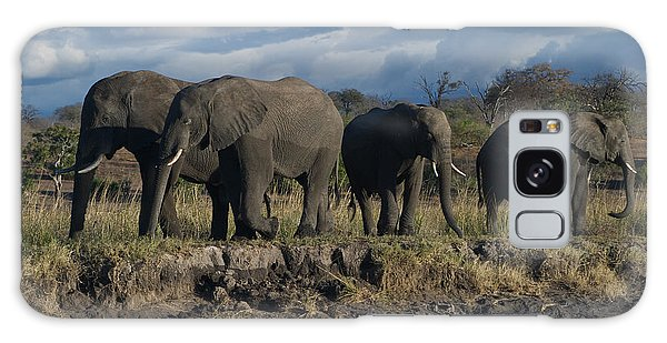 Clouds And Elephants Galaxy Case