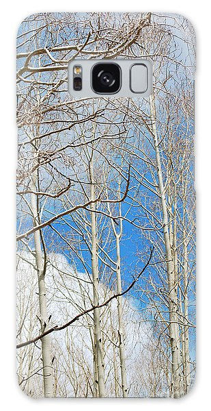Cloudy Aspen Sky Galaxy Case by Donna Greene