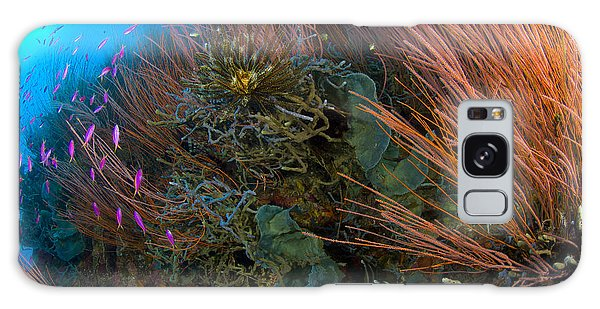 Feather Stars Galaxy Case - Colony Of Red Whip Fan Coral With Fish by Steve Jones