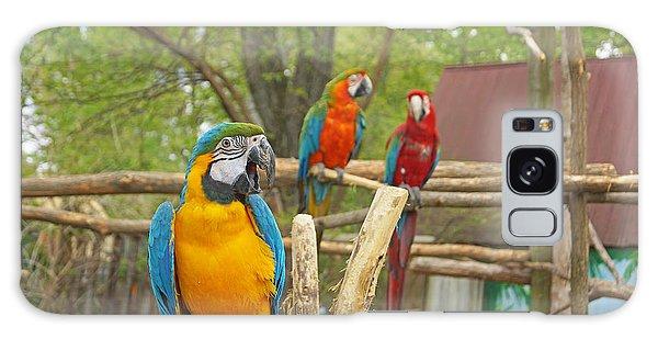 Color Of Parrots  Galaxy Case by J Jaiam
