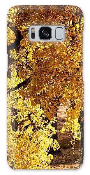 Colorado Gold Galaxy Case