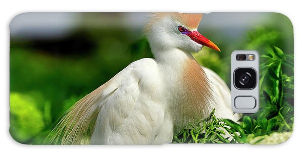 Colorful Cattle Egret Galaxy Case