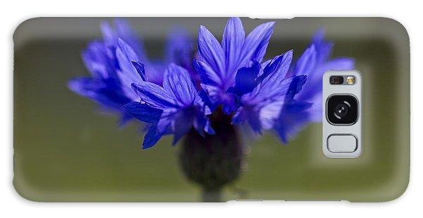 Cornflower Blue Galaxy Case