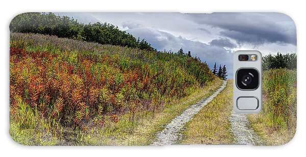 Country Road In Fall Galaxy Case by Michele Cornelius