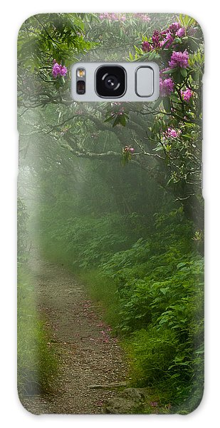 Craggy Path 2 Galaxy Case