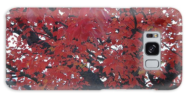 Crimson Leaves Galaxy Case