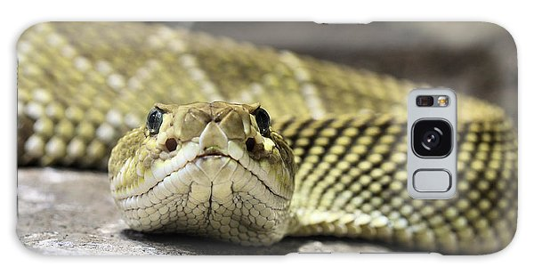 Crotalus Basiliscus Galaxy Case by JC Findley