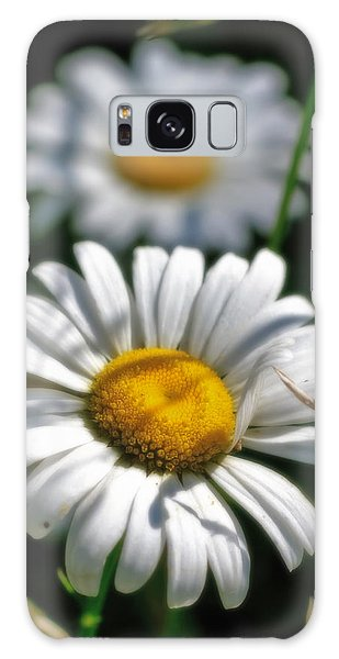Daisies Aglow Galaxy Case