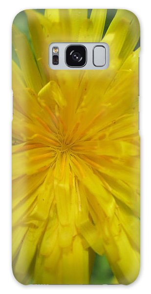 Dandelion Close Up Galaxy Case by Kym Backland