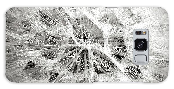 Dandelion In Black And White Galaxy Case