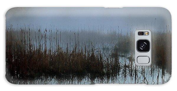 Daybreak Marsh Galaxy Case