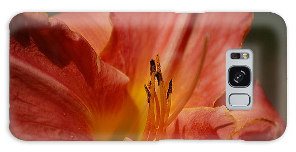 Daylilly Galaxy Case by Randy J Heath