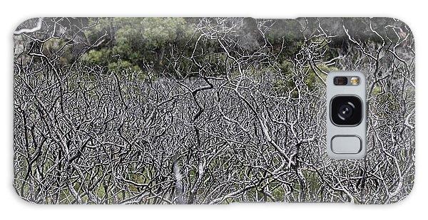 Wilsons Promontory Galaxy Case - Dead Tree Garden by Douglas Barnard