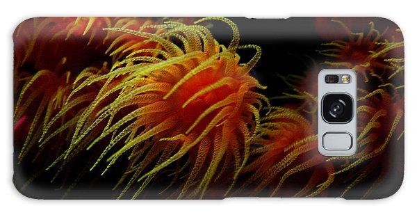 Deep Ocean Coral Polyp Galaxy Case