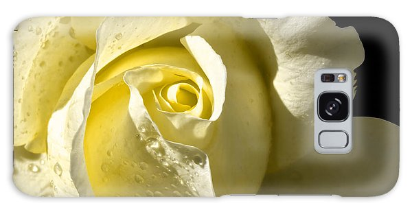 Delightful Yellow Rose With Dew Galaxy Case by Tracie Kaska