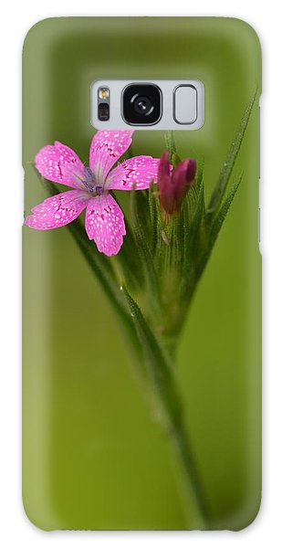 Deptford Pink Galaxy Case by JD Grimes